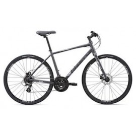 2019 Giant Escape 2 Disc